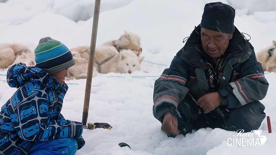 Profesor en Groenlandia, de Samuel Collardey